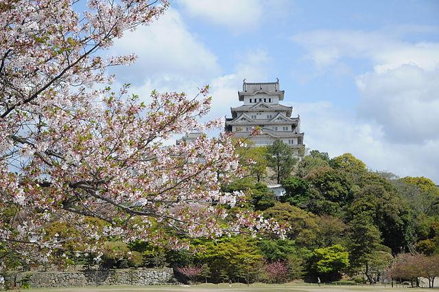 Château d'Himeji au Japon, cerisiers en fleurs